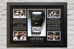 AJ Glove Display 2
