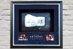 Framed-Boxing-Glove-1