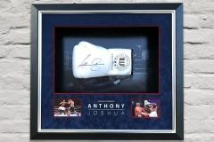 Framed Boxing Glove 1