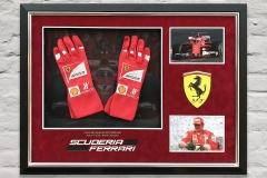 Framed F1 Gloves