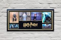 Framed Harry Potter Display