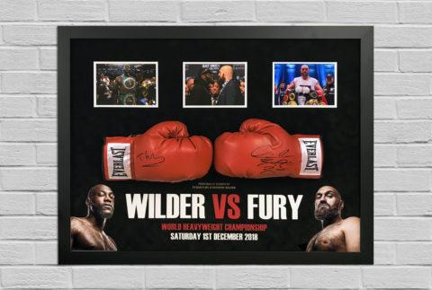 Fury Wilder Gloves